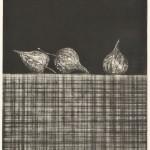 田坂絹子/TASAKA kinuko:卓上のほおずきⅡ 49.5×36 銅版・メゾチント