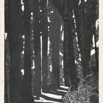 水谷彰男/MIZUTANI akio:奈良川村百地蔵への道 60×41.5 木版
