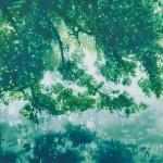 畠山昌子/HATAKEYAMA shoko:Vision 140401 F130 油彩