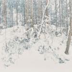 髙橋政子/TAKAHASHI masako:雪【ゆき】垂【しずり】  F130 アクリル