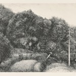 【奨励賞】徳長 章/TOKUCHO akira:二羽の鳩 30.3×49.1 銅版・エッチング・ビュラン・ドライポイント