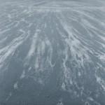 麻績勝広/OMI katsuhiro:白い泡 S60 油彩
