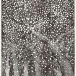 新井 リコ/ARAI riko:森 90×70 銅版