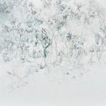髙橋 政子/TAKAHASHI masako :冬よもぎ F130 アクリル