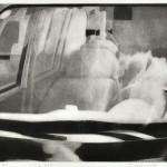 石原 テツロウ/ISHIHARA tetsuro:ことだまⅩⅨ 36.5×53 銅版