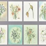 五十嵐美代子/IGARASHI miyoko: 野の花シリーズ 73×97 ミクストメディア