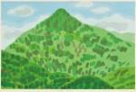 水津保美/SUIZU yasumi : 麻績 冠着山 55.5×84 木版