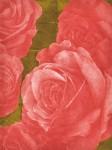 谷岡 暁/TANIOKAsato:薔薇図(紅) 60×45 平版