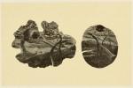 【奨励賞】大津 悟司/OTSU satoshi:遅い成長 35.5×55 木版・木口木版
