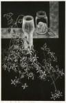 横瀬 信子 / YOKOSE nobuko : 風の記憶-2017-白い花と貝 70×45 銅版・メゾチント