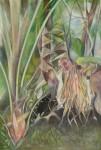 小縣 晴美 / OGATA harumi : 熱帯の植物(2) F120 油彩