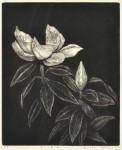 田坂 絹子 / TASAKA kinuko : 夏への扉Ⅱ 36.5×29.5 銅版