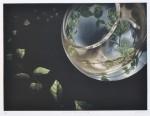 【奨励賞】三浦 やほ子/MIURA yahoko:crystal planet-III 27×36 銅版・メゾチント