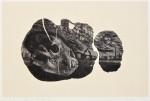 【奨励賞】大津 悟司/OTSU satoshi:遅い成長 K 36×55 木版・木口木版