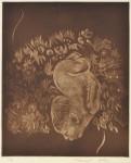 大上 吉成/OUE yoshinari:宝 42×35 銅版・メゾチント