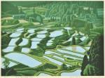 前田 光一/MAEDA koichi:星峠の棚田(新潟, 十日町市) 40×55 木版