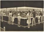 幸田 美枝子/KOTA mieko:小さな水族館 23×32 銅版