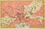 関野 洋作/SEKINO yosaku:紅梅白梅 52×82 木版・金箔