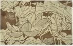 森島 勇/MORISHIMA isamu:不忍池、夏 41×66 木版