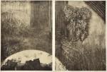 麓 絵理子/FUMOTO eriko:daybreak 40×60 銅版