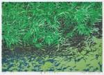 尾花 繁男/OBANA shigeo:蓬莱の水は澄む 45×57 木版