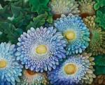 天笠 和美/AMAGASA kazumi:情熱の花Ⅳ F100 油彩