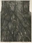 白崎 悦子/SHIRASAKI etsuko : 大地の詩~鼓動Ⅱ 81×66 銅版
