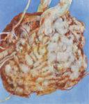 小野 和子/ONO kazuko:魂根-21 130.3×112 油彩