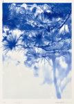清水美三子/SHIMIZU misako:landscape-1 56×41 平版