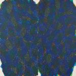 西野 雅子/NISHINO masako:shadow 挽歌 S130 アクリル