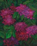 天笠 和美/AMAGASA kazumi:情熱の花Ⅲ F100 油彩