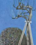 山本 弘子/YAMAMOTO hiroko:「病める樹」を支える F100 油彩
